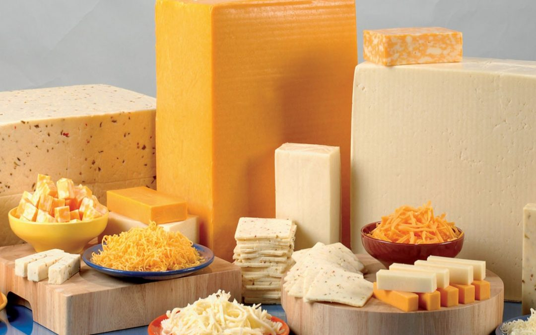 Reliability excellence manager search for multi-billion-dollar cheese manufacturer