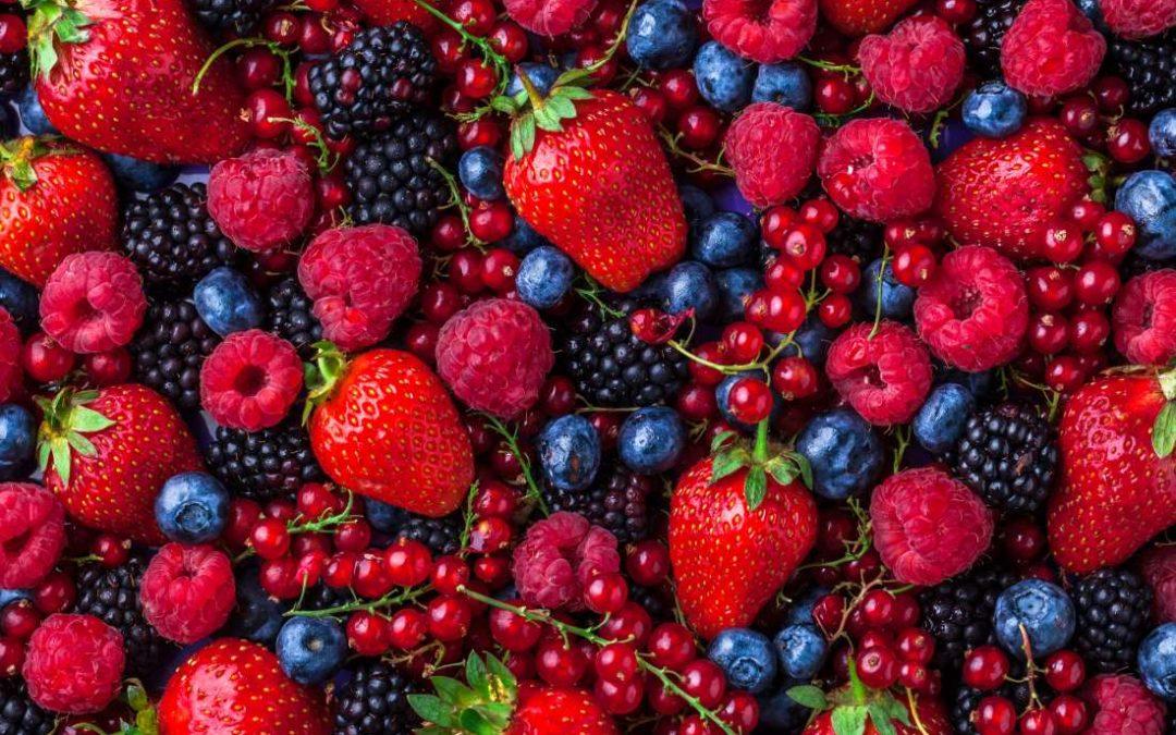 Senior Controller at Frozen Fruit Manufacturer in California