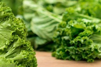Plant Manager Search for Vertically Integrated Produce Company