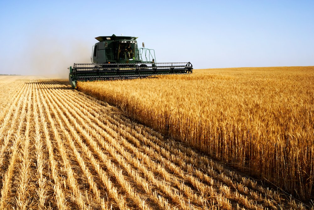 Human Resources Director Search for Agribusiness in Salinas, California