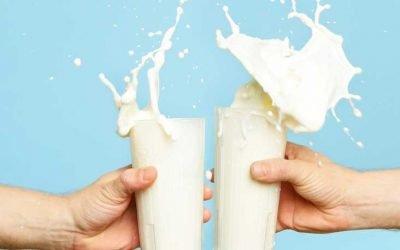 Senior Director of Sales Search for Dairy Processor in Michigan